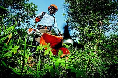 Jardinage saint arnoult en yvelines